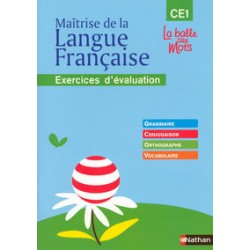 MAITRISE LANGUE FRSE CE1 EXERC